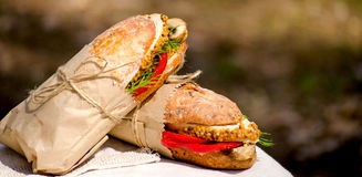 Dois sanduíches com galinha em um piquenique Fotos de Stock Royalty Free