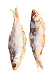 Dois secaram os peixes isolados no branco Foto de Stock