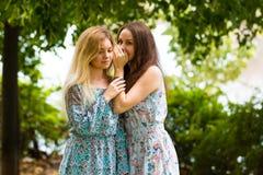 Dois segredos consideravelmente mais bonitos das partes dos adolescentes Foto de Stock Royalty Free