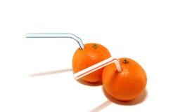 Dois tangerines Foto de Stock