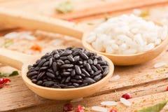 Dois tipos do arroz nas colheres de madeira Fotografia de Stock