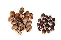 Dois tipos do café: feijões grandes e pequenos Fotografia de Stock Royalty Free