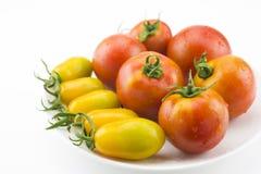 Dois tipos dos tomates Fotografia de Stock Royalty Free