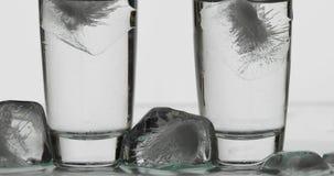 Dois tiros da vodca nos vidros com cubos de gelo Fundo branco fotografia de stock