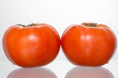 Dois tomates Imagens de Stock