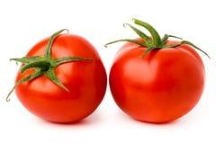 Dois tomates maduros em um branco foto de stock royalty free