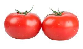 Dois tomates vermelhos Imagens de Stock Royalty Free