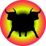 Dois touros pretos Imagem de Stock Royalty Free