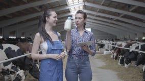 Dois trabalhadores consideravelmente fêmeas na exploração agrícola da vaca que verificam a qualidade do leite na garrafa Uma tabu filme