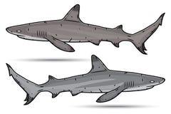 Dois tubarões dos desenhos animados isolados no fundo branco Imagens de Stock