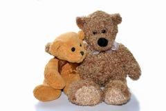 Dois ursos de peluche Fotografia de Stock Royalty Free
