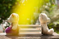 Dois ursos de peluche que sentem assento desolado oposto a uma caixa de madeira no meio fotografia de stock royalty free