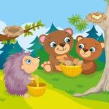 Dois ursos e ouriços Foto de Stock Royalty Free