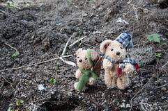 Dois ursos no jardim Foto de Stock Royalty Free