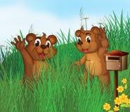 Dois ursos novos perto de uma caixa postal de madeira Fotografia de Stock