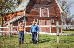 Dois vaqueiros caucasianos que falam entre si como estão andando longe do celeiro Foto de Stock Royalty Free