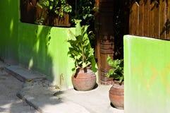 Dois vasos isolados exteriores perto de uma parede verde imagens de stock royalty free
