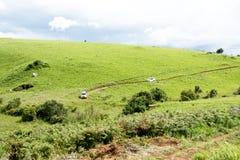 Dois veículos 4x4 que viajam na estrada de terra perigosa Imagem de Stock Royalty Free
