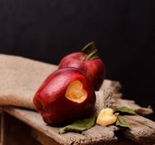Dois vermelhos - da cor rústica escura da foto da maçã deliciosa coração fresco do vegetariano fotografia de stock royalty free