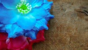 Dois vermelhos e flores azuis do algodão artificial Fotografia de Stock