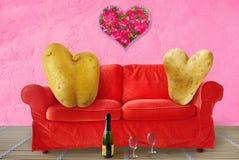 Dois viciados em televisão do Valentim Fotos de Stock