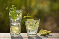 Dois vidros da água de soda em uma placa idosa, na natureza Imagem de Stock Royalty Free