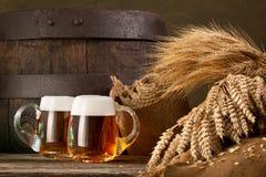 Dois vidros de cerveja com trigo e cevada Imagem de Stock Royalty Free