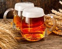 Dois vidros de cerveja com trigo e cevada Fotos de Stock