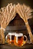 Dois vidros de cerveja com trigo e cevada Imagens de Stock