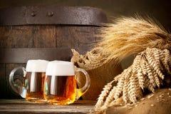 Dois vidros de cerveja com trigo e cevada Fotos de Stock Royalty Free