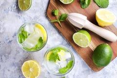 Dois vidros de refrescar a bebida não alcoólica da limonada do mojito com limão orgânico, fatias do cal, folhas de hortelã, palha fotografia de stock