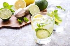 Dois vidros de refrescar a bebida não alcoólica da limonada do mojito com limão orgânico, fatias do cal, folhas de hortelã, palha fotos de stock royalty free
