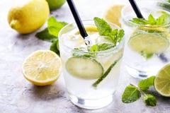 Dois vidros de refrescar a bebida não alcoólica da limonada do mojito com limão orgânico, fatias do cal, folhas de hortelã, palha imagens de stock