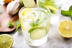 Dois vidros de refrescar a bebida não alcoólica da limonada do mojito com limão orgânico, fatias do cal, folhas de hortelã, palha imagem de stock royalty free