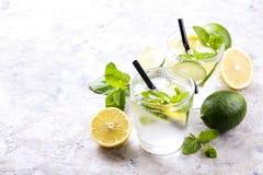 Dois vidros de refrescar a bebida não alcoólica da limonada do mojito com limão orgânico, fatias do cal, folhas de hortelã, palha imagens de stock royalty free