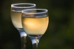 Dois vidros do vinho imagens de stock royalty free