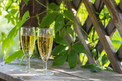 Dois vidros do vinho espumante branco Fotografia de Stock Royalty Free