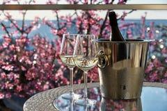 Dois vidros do vinho frio branco fotos de stock