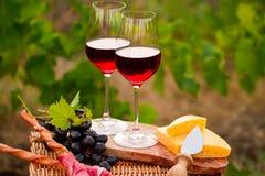 Dois vidros do vinho tinto com pão, carne, uva e queijo no th Fotos de Stock Royalty Free