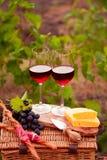 Dois vidros do vinho tinto com pão, carne, uva e queijo no th Imagem de Stock Royalty Free