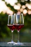 Dois vidros do vinho tinto na tabela no vinhedo Imagens de Stock Royalty Free