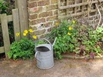 Doit arroser les fleurs Photo stock