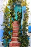 Dojazdowa drabina dom ozdabiał z roślinami Zdjęcie Stock