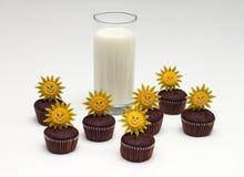 Dojni i czekoladowi muffins Zdjęcie Royalty Free