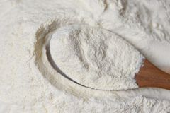 Dojny proszek na drewnianej łyżce z rozsypiskiem sproszkowany organicznie mleko zdjęcie royalty free