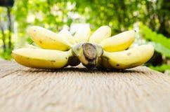dojrzała bananowa wiązka Obrazy Stock
