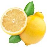 Dojrzała cytryna i połówka cytryny owoc Fotografia Royalty Free