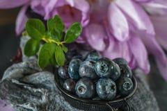 Dojrzała czarna jagoda i czarna jagoda w metal filiżance przeciw tłu delikatni kwiaty bezczasowi z bliska Obrazy Stock