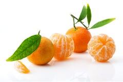 Dojrzała i soczysta mandarynka z zielenią opuszcza w górę fotografia royalty free