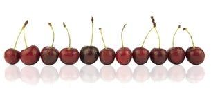 dojrzała jagody wiśnia Zdjęcie Stock